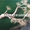 仿真松树迎客松大型美人松摆件新中式玄关造景装饰罗汉松盆景假树