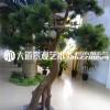 仿真迎客松罗汉松树假树商场酒店橱窗造景落地绿植装饰大型松树